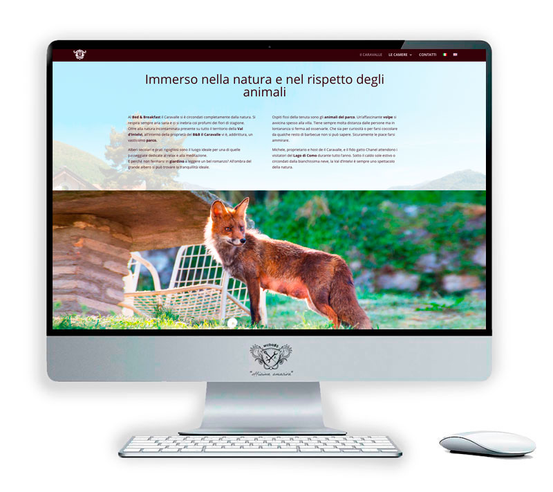 Web agency Como | weba05